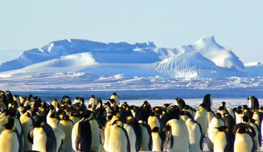 【南極大陸準備編⑤】決定版!南極クルーズ船を予約する際に確認するべきポイント8つ!