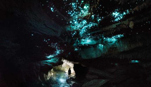 【ニュージーランド編⑭】グロウワームが作る星空のように幻想的な景色に感動するワイトモ洞窟