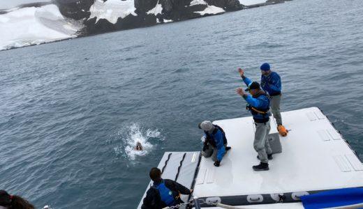 【南極クルーズ編⑪】南極上陸最終日、ポーラープランジで0度の南極海にダイブ!